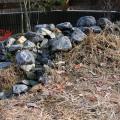 池の改修2