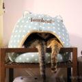 新・猫ベッド